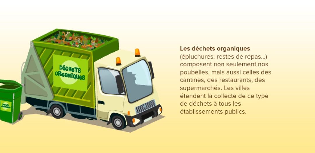 La collecte des déchets organiques